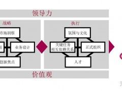 IBM的BLM(业务领先模型)